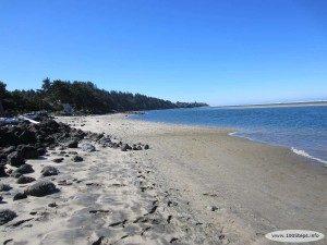 Alsea Bay Beach