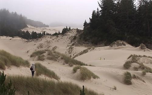 Oregon Dunes Overlook