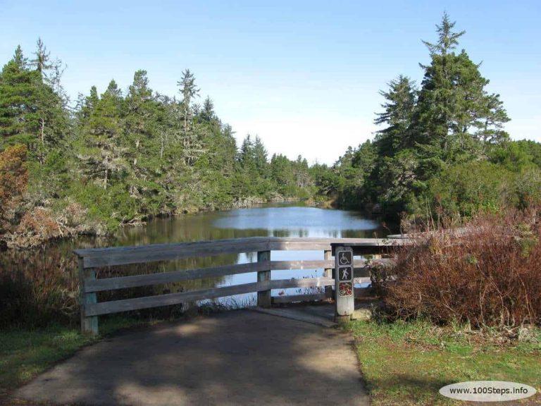 Siltcoos Lagoon Trail